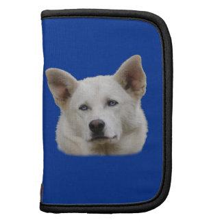 retrato del perro de trabajo planificadores