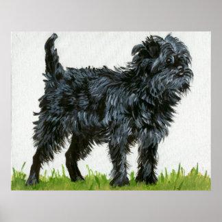 Retrato del perro del Affenpinscher Póster