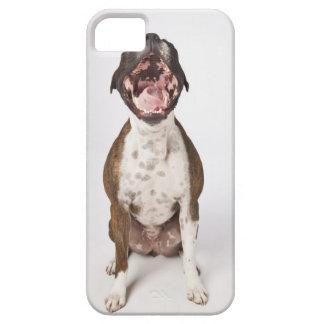 retrato del perro del boxeador que bosteza iPhone 5 Case-Mate carcasa