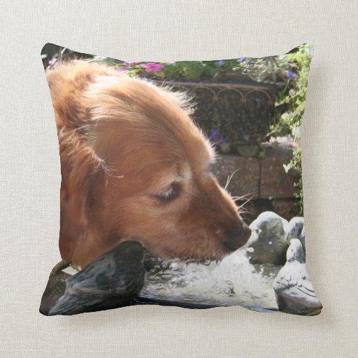 Retrato del perro del golden retriever cojín