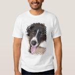 retrato del perro negro playera