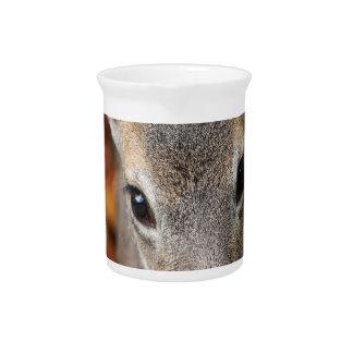 Retrato del primer del cervatillo de los ciervos jarrón
