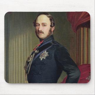 Retrato del Príncipe Alberto (1819-61) 1859 (aceit Tapetes De Raton