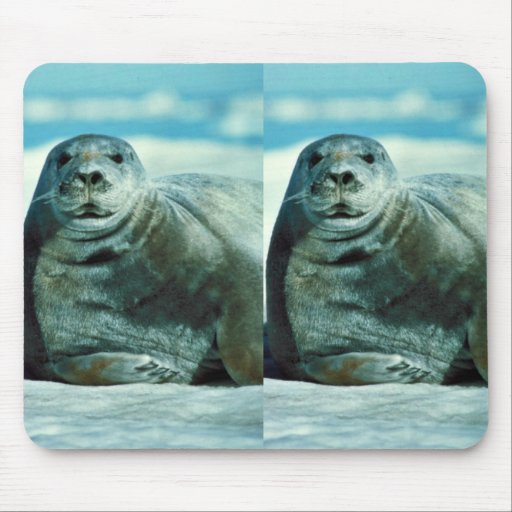 Retrato del sello barbudo alfombrilla de ratones