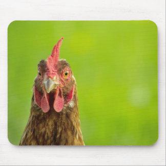 Retrato divertido del pollo - Mousepad