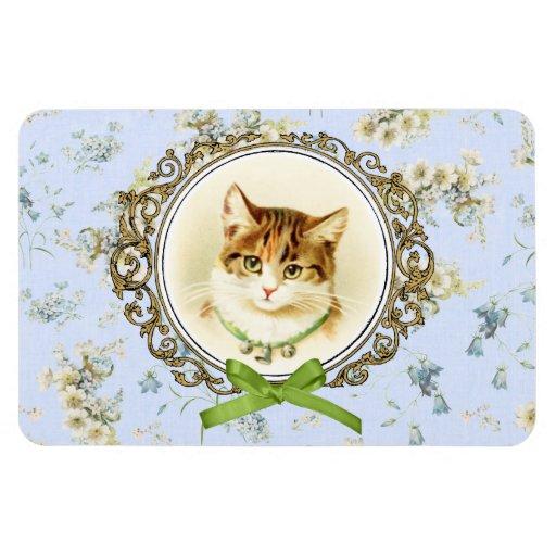 Retrato dulce del gato del vintage imanes