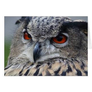 Retrato eurasiático hermoso del Eagle-Búho Felicitaciones