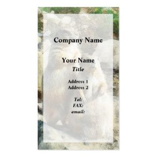 Retrato formal del perro de las praderas plantilla de tarjeta de visita