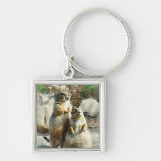 Retrato formal del perro de las praderas llavero cuadrado plateado