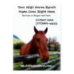 Retrato fotográfico del caballo de Brown Tarjetas De Visita Grandes