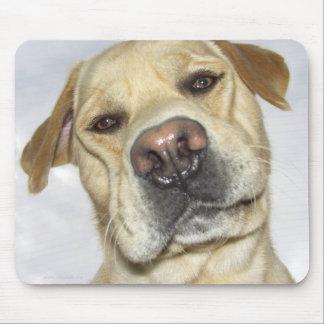 Retrato frontal de la cara de Labrador Tapetes De Ratones
