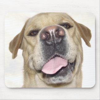 Retrato frontal torpe de la cara de Labrador Tapete De Raton