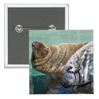 Retrato gris de los pares del sello pin
