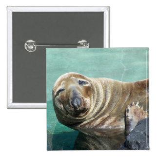 Retrato gris del sello derecho pin