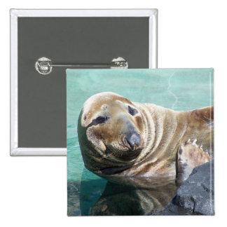 Retrato gris del sello pin