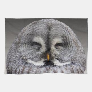Retrato gris lindo del búho toallas de mano