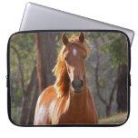 Retrato hermoso de la foto del caballo de la casta fundas computadoras