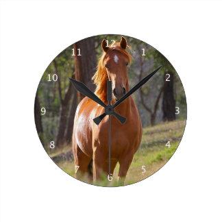 Retrato hermoso de la foto del caballo de la casta reloj redondo mediano