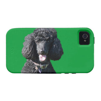 Retrato hermoso de la foto del negro del perro de iPhone 4 fundas
