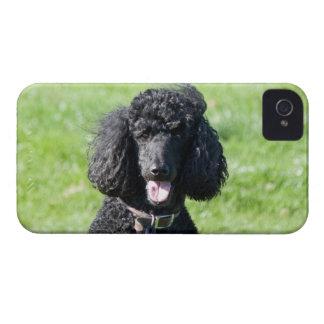 Retrato hermoso de la foto del negro del perro de iPhone 4 Case-Mate coberturas