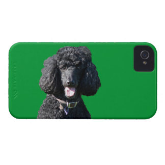 Retrato hermoso de la foto del negro del perro de iPhone 4 funda