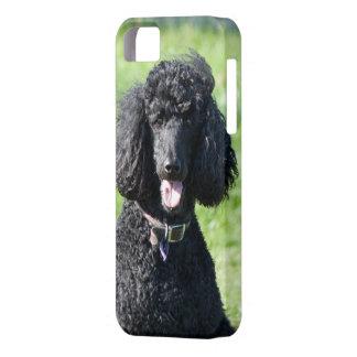 Retrato hermoso de la foto del negro del perro de iPhone 5 funda