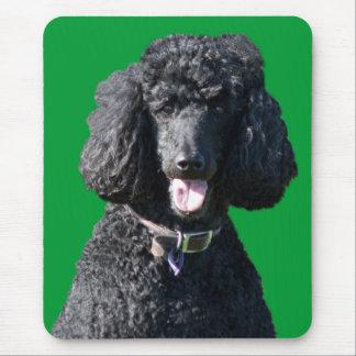 Retrato hermoso de la foto del negro del perro de  alfombrilla de ratón
