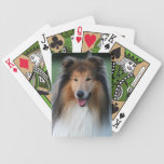 Retrato hermoso de la foto del perro áspero del co cartas de juego