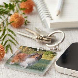 Retrato hermoso de la foto del perro áspero del co llavero cuadrado acrílico a una cara