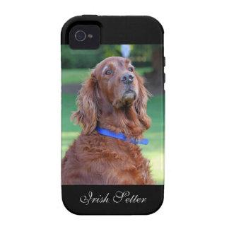 Retrato hermoso de la foto del perro de Irish Vibe iPhone 4 Funda