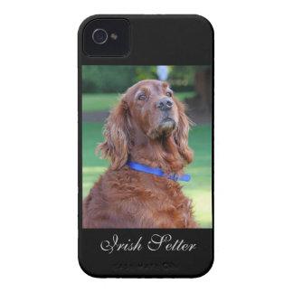 Retrato hermoso de la foto del perro de Irish iPhone 4 Funda