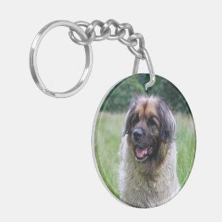 Retrato hermoso de la foto del perro de Leonberger Llavero