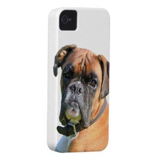 Retrato hermoso de la foto del perro del boxeador iPhone 4 Case-Mate cárcasa
