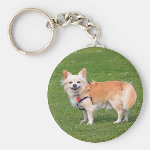 Retrato hermoso de pelo largo de la foto del perro llavero redondo tipo pin