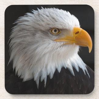 Retrato hermoso del águila calva posavaso