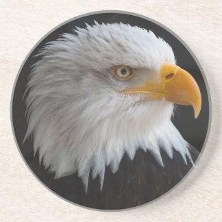 Retrato hermoso del águila calva posavasos diseño