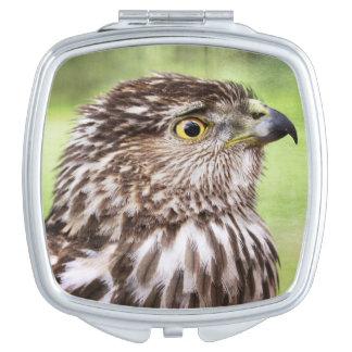 Retrato hermoso del halcón espejos compactos