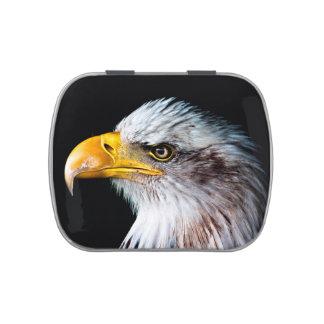 Retrato hermoso del lado del águila jarrones de caramelos