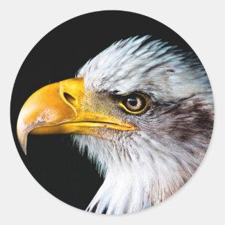 Retrato hermoso del lado del águila pegatina redonda