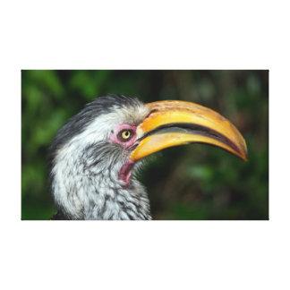 Retrato hermoso del lado del pájaro del hornbill lona envuelta para galerias