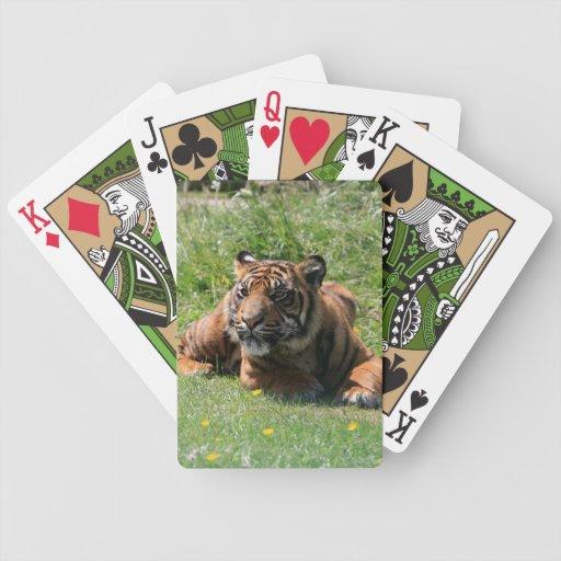 Retrato hermoso lindo de la foto del cachorro de t baraja de cartas