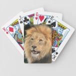 Retrato hermoso principal masculino de la foto del barajas de cartas