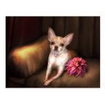 """""""Retrato I de la chihuahua """" de Jaguarwoman Postales"""
