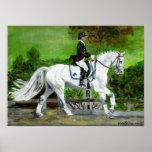 Retrato I del caballo del Dressage Posters
