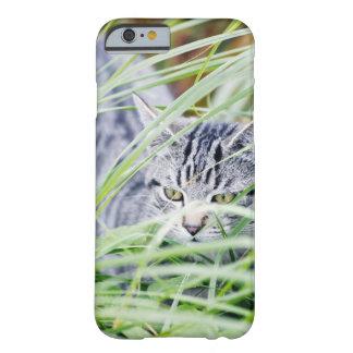 retrato joven del gato funda para iPhone 6 barely there