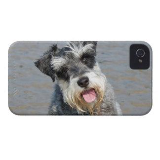 Retrato lindo de la foto del perro miniatura del iPhone 4 Case-Mate fundas