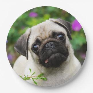 Retrato lindo del perro de perrito del barro platos de papel