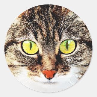 Retrato lindo observado grande del gato pegatina redonda