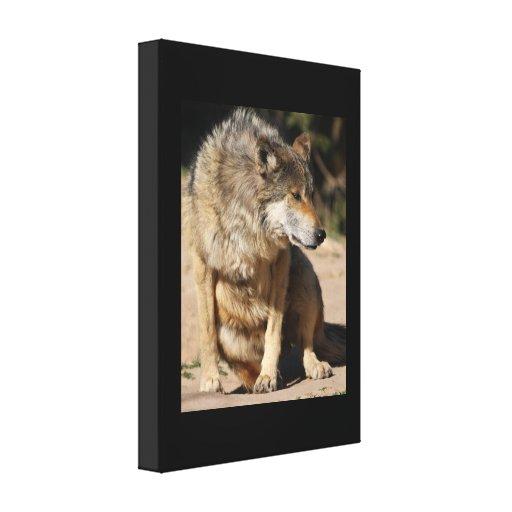 Retrato mexicano del lobo lona envuelta para galerias