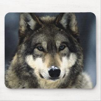 Retrato Mousepads del lobo Alfombrilla De Ratón
